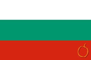 bulgarca tercüme, bulgarca çeviri