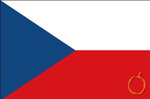 çekçe, tercümanlık, çeviri, tercüme, çeviri bürosu, tercüme bürosu