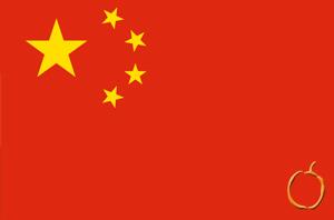 Çince Tercüme/Çeviri Bürosu