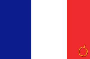 Fransızca Tercüme/Çeviri