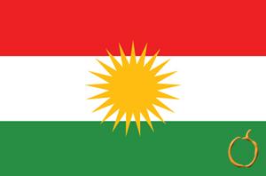 Kürtçe-Türkçe Tercüme