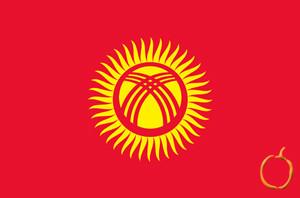 Kırgızca Tercüme Fiyatları