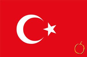Türkçe Tercüme Fiyatları