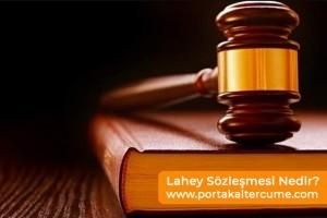 Lahey Sözleşmesi Nedir?